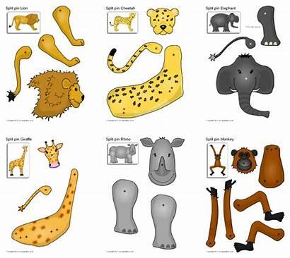 Parts Giraffe Split Animals Safari Sparklebox Scouts
