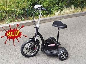 Senioren Dreirad Gebraucht : senioren elektro scooter h ufige fragen zum elektromobil ~ Kayakingforconservation.com Haus und Dekorationen