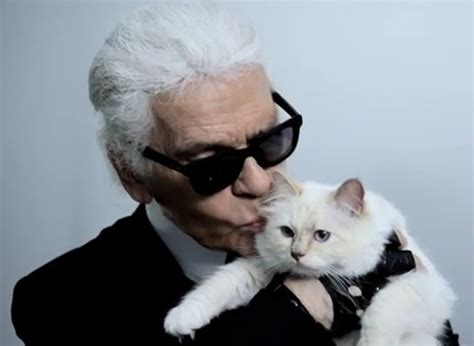 karl lagerfeld designs  exclusive collection inspired