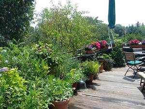 balkon bepflanzen fur einen tollen urlaub auf balkonien With französischer balkon mit garten kübel bepflanzen