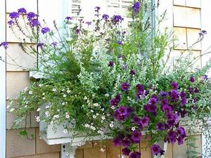 Jardiniere Fleurie Plein Soleil : balconni re en bois pour les jolies fleurs ~ Melissatoandfro.com Idées de Décoration