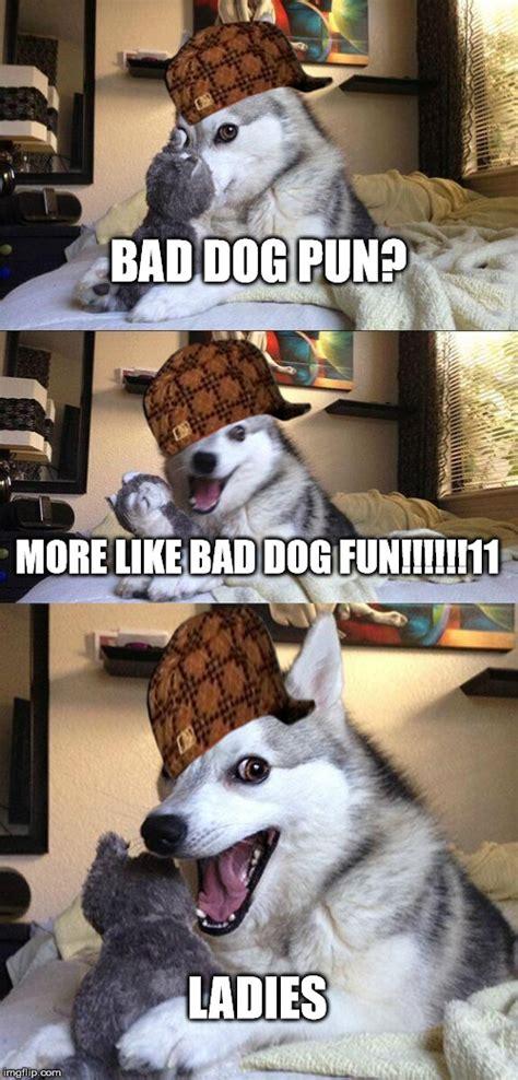 Bad Dog Meme - bad pun dog meme imgflip