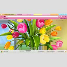 Spring Browser Themes To Help You Finally Welcome The New Season  Brand Thunder