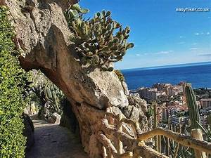 Jardin Exotique Monaco : where to find the hidden gardens of monaco ~ Dallasstarsshop.com Idées de Décoration