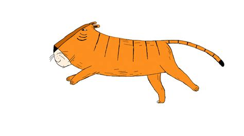 Pics Of White Tiger 2d Animation Illustration Gif Wifflegif