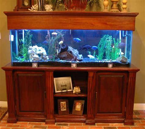 aquarium stand event horizons