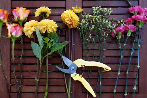Blumenstrauß Selber Binden Anleitung by Blumenstrau 223 Binden Eine Anleitung Wie Ihn Selber Bindet