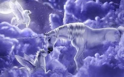 Unicorns Magical Creatures Fanpop Unicorn Mystical Pegasus