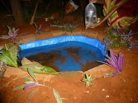 constructing  small fish pond   garden