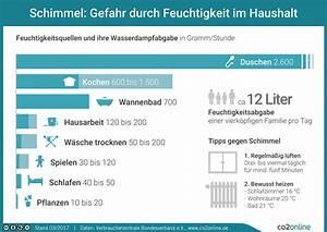 Wie Entsteht Schimmel : infografiken co2online ~ Bigdaddyawards.com Haus und Dekorationen