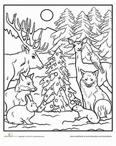 Color the Forest Holiday!   Worksheet   Education.com