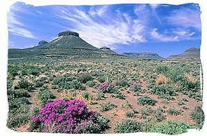 The Great Karoo Climate, Karoo National Park South Africa