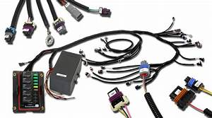 Infinity Gm Ls 24x Plug  U0026 Play Engine Harness
