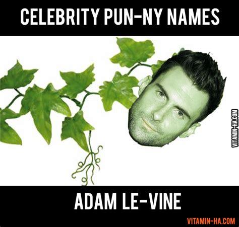 Adam Levine Meme - funny quotes from adam levine quotesgram