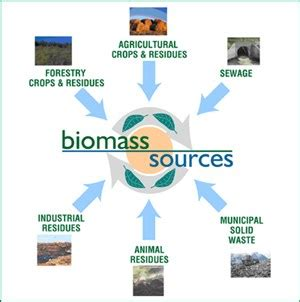 Importance Of Biomass Energy. Universal Protection Security Systems. Nashville House Cleaning Belfast Office Space. Electronically Sign Pdf Scrum Training Dallas. Shields Family Dentistry Dish Tv Nfl Network. Michigan Medicare Medicaid Assistance Program. Connecticut State Income Tax. Experian Credit Freeze Fast Divorce San Diego. Louisiana Police Academy Cable Service Online