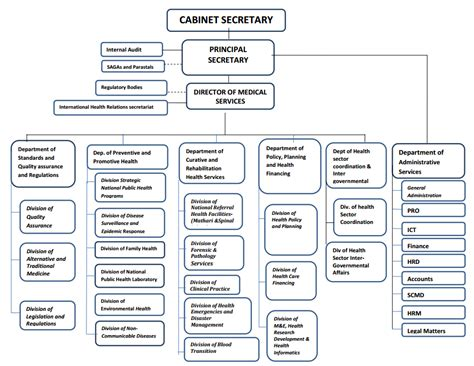 organizational structure ministry  health
