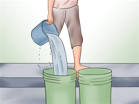 horse care take horses wikihow steps easy