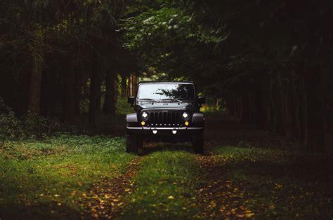 wallpaper jeep wrangler forest nature grass