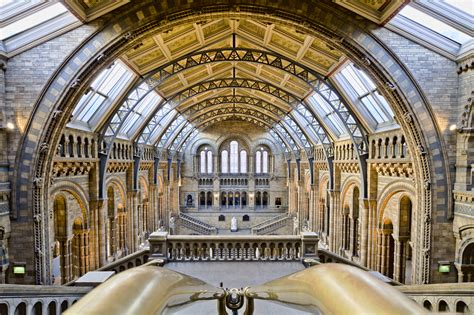 Natural History Museum: 'We hope people will discover new species with our open data' - The ODI