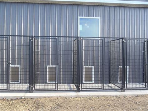 boarding kennel lobby indoor outdoor kennels paws cs