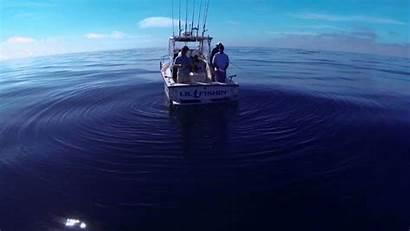 Fishing Sea Deep Gopro