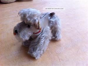Steiff Tiere Alt : steiff tiere hund sehr alt sammelobjekte von unserer oma ~ Watch28wear.com Haus und Dekorationen