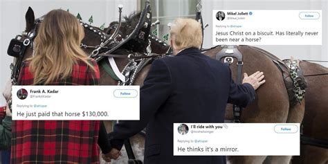 trump backside horse stroked jokes christmas