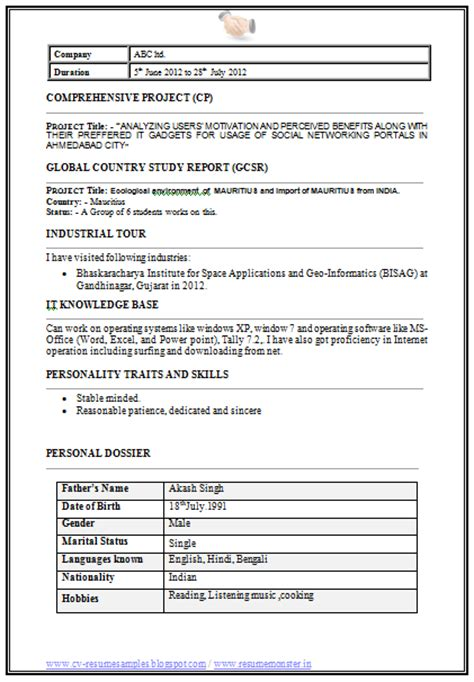 personal dossier in resume 10000 cv and resume sles with free mba information technology it resume format