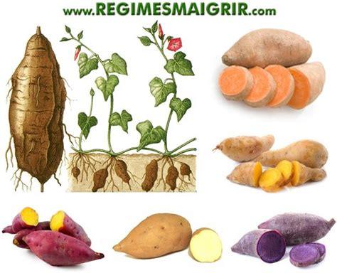 patate douce bienfaits et risques valeur nutritionnelle