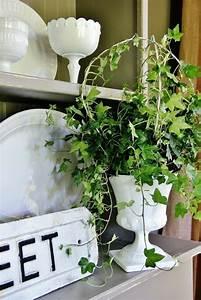 Efeu Als Zimmerpflanze : giftige zimmerpflanzen 20 giftpflanzen die sie kennen sollen ~ Indierocktalk.com Haus und Dekorationen