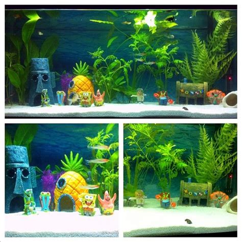 spongebob fish tank decorations at walmart 17 best images about lucas likes on bobs