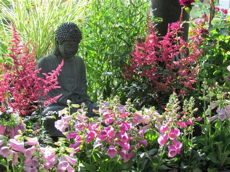 when do perennials return perennials are the backbone of the flower garden providing color with their spectacular blossoms