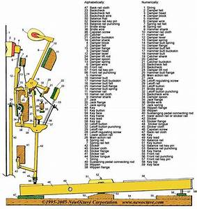 Upright Piano Parts Action Diagram