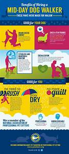 best 20 dog business ideas ideas on pinterest dog With dog babysitting app