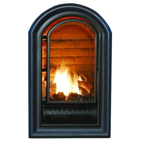 Ventless Liquid Propane Fireplace Insert   20,000 BTU