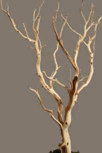 manzanita branches wholesale manzanita branches sanded 21 38 quot