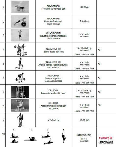 programma  aumentare la massa muscolare