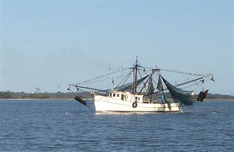 Shrimp Boat Hours by Tuesday November 22nd