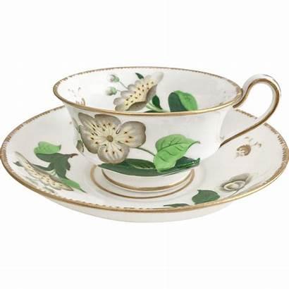 Cups Minton Tea Rubylane Unusual 1830 Teacup