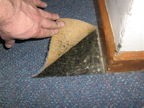 how to identify asbestos home