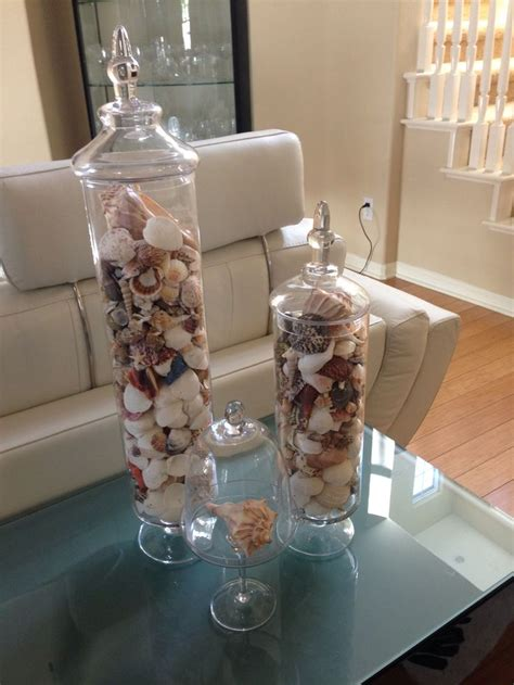 1000 images about seashell display ideas on pinterest