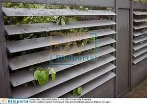 details zu 0003184908 sichtschutz im garten trennwand With französischer balkon mit raumteiler metall garten