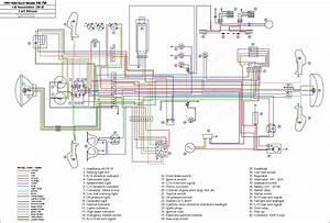 Weekend Warrior Toy Hauler Wiring Diagram