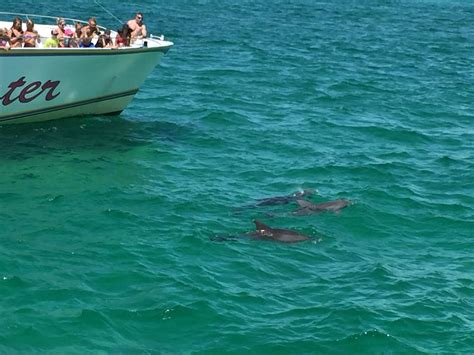 Glass Bottom Boat Tours In Destin Florida by Boogies Glass Bottom Boat Dolphin Cruise Boat Tour