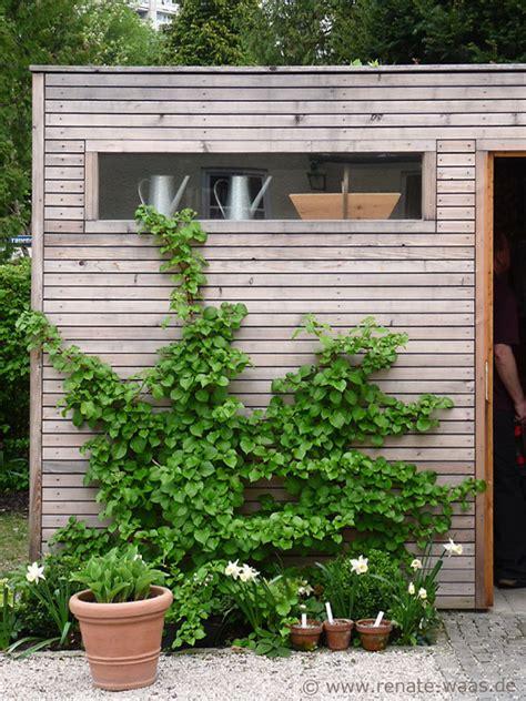 gartenblog geniesser garten gartenhaus geraeteschuppen