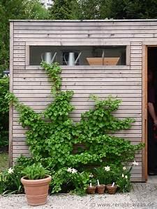 Geräteschuppen Holz Günstig : gartenblog geniesser garten gartenhaus ger teschuppen ~ Whattoseeinmadrid.com Haus und Dekorationen