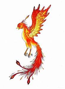 Phoenix Bird Drawing Tatuaggio Fenice Gallerie Di Immagini Foto E Disegni Più