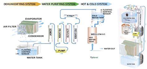 Pflanzen Die Giftstoffe Aus Der Luft Filtern by Pflanzen Die Giftstoffe Aus Der Luft Filtern Gl Cksfeder