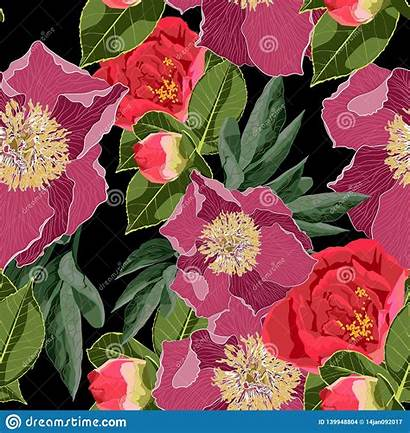 Seamless Floral Spring Pattern Blossom Marriage