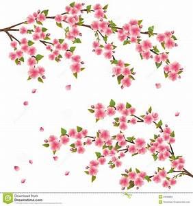 Dessin Fleur De Cerisier Japonais Noir Et Blanc : fleur de cerisier japonais dessin manga dessin de manga ~ Melissatoandfro.com Idées de Décoration